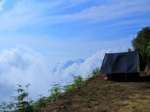 Temperature In Munnar Dropped Travelers Can Enjoy Cold Weather