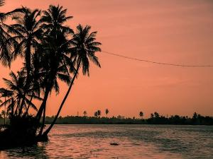 Best Places To Visit In Kerala During The Month Of August 2020