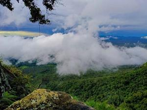 From Munnar To Agumbe Must Visit Hill Stations In South India In Winter