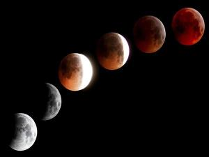 Lunar Eclipse 2021 Blood Moon On May 26 Attractions Date Timings And Places To Watch In India
