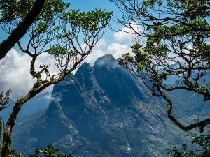 Ponmudi Eco Tourism Online Booking Is About To Start From Next Month