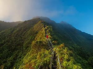 Stairway To Heaven In Hawaii Interesting Facts Attractions And Specialities