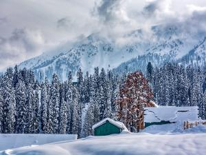 From Bodhgaya To Nainital Best Winter Destinations In North India