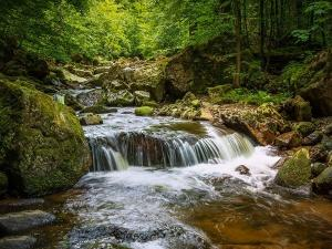Chillithodu Waterfalls In Idukki Attractions Specalities And How To Reach