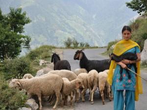 Top 5 Tourist Places Himachal Pradesh