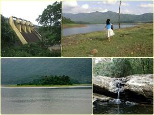 Eco Tourism Chimmini Wild Life Sanctuary Thrissur