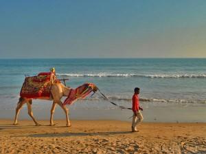 Top 5 Beaches Odisha