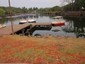 Sarovaram Bio Park Kozhikode