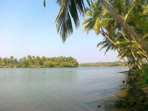 Valiyaparamba Backwaters Tourism Information