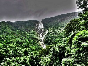 Dudhsagar Trek Travel Guide