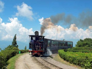Riding The Toy Train Darjeeling