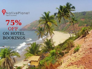 Use Paytm Wallet With Nativeplanet Hotels