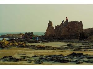 Travel Through Coastal Areas Kannur