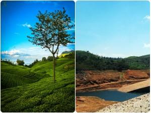 Perfect Summer Destinations Tamil Nadu