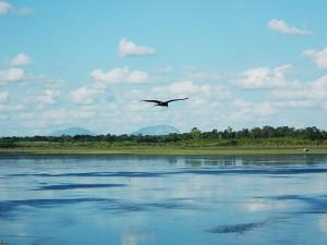 Must Visit Lakes Bengaluru