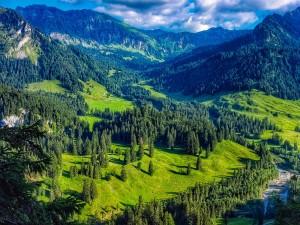 Bangus Valley Piece Of Heaven Kashmir