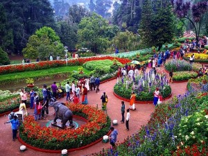 Complete Travel Guide Ooty Flower Show