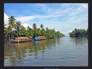 Beautiful Backwater Cruise From Alappuzha To Kochi