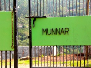 Ten Things To Do In Munnar