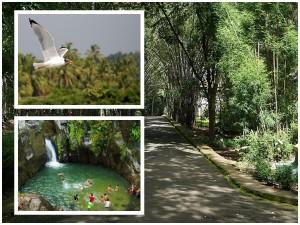 Must Visit Places Visit Malappuram