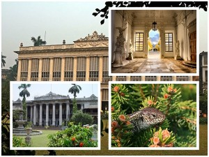 Marble Palace In Kolkata History Timings And How To Reach