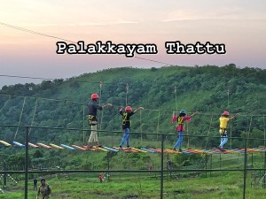 Palakkayam Thattu Kannur Best Time To Visit Things To Do And How To Reach