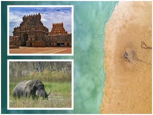 Reasons To Visit South India For A Relaxed Vacation