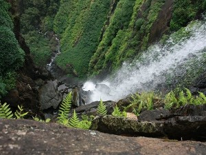 Top 5 Places To Visit In Agumbe