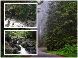 Jogigundi Falls In Agumbe Attractions And How To Reach