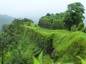 Karnala In Maharashtra Attractions And How To Reach