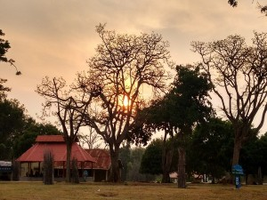 Bandipur National Park Night Stay Details And Experience