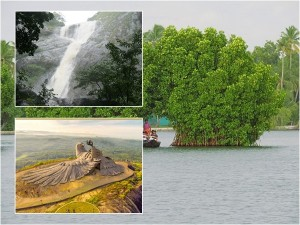 Popular Road Trips In Kollam