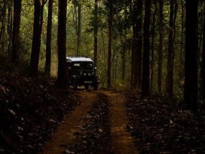 Places To Visit In Kerala In September