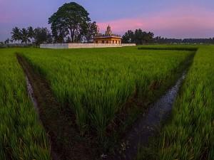 Places To Visit Around Mysore