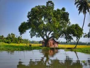 The Top Instagrammable Destinations In Kerala