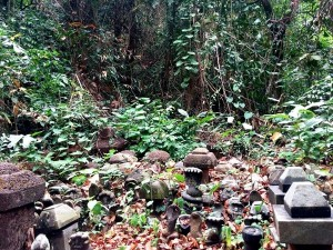 Pathirikunnathu Mana In Palakkad History Attractions And How To Reach