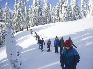 Tips For Safe And Comfortable Winter Trekking