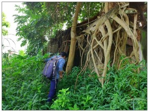 Kazhakoottam Palace In Thiruvananthapuram History Attractions And How To Reach