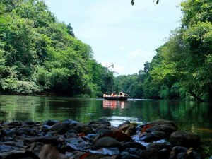 How To Spend One Day In Konni In Pathanamthitta