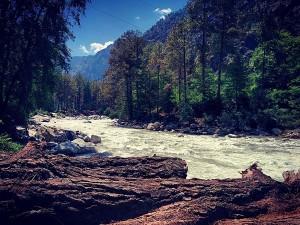 Things You Should Not Do In Your Parvati Valley Trip