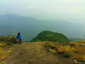 Agasthyakoodam Peak In Kerala Trekking Attractions And How To Reach