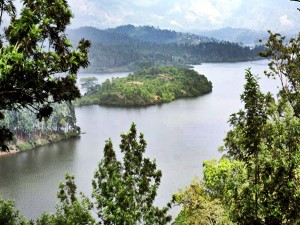 Attractions Specialities And How To Reach Anayirankal Dam Idukki