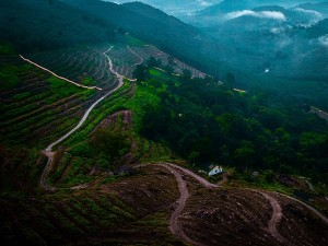 Best Places To Visit In And Around Vagamon Without Spending