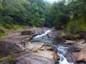 Kallar In Thiruvananthapuram Attractions Specialities And How To Reach