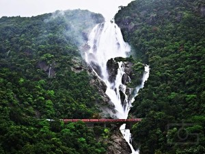 Interesting Facts About Dudhsagar Waterfall In Goa