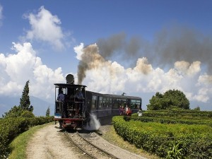 Darjeeling Is Ready To Receive Travellers From July 1 Onwards