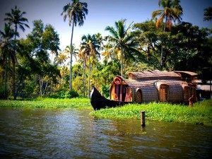 Reasons Why Monsoon Is The Best Time In Kerala To Travel