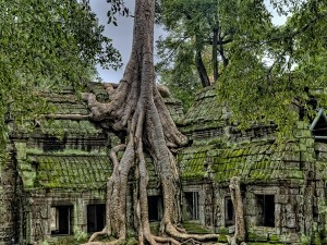 Cambodia Asks Tourists To Pay Coronavirus Deposit