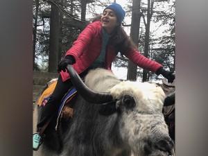 Actress Bhama S Manali Trip Updates