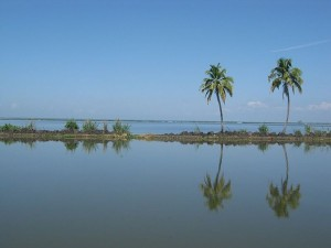 Interesting And Unknown Facts About Kuttanad In Alappuzha